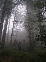 Wanderung Simonswälder Tal