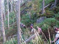 Alpiner Pfad am Feldberg