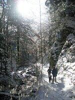 Gfäll und Wasserfall Richtung Rohrhardsberg